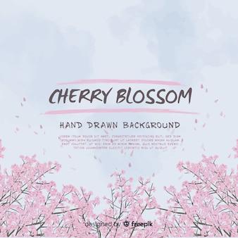 손으로 그린 벚꽃 배경