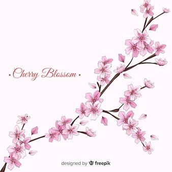 Hand drawn cherry blossom branch background