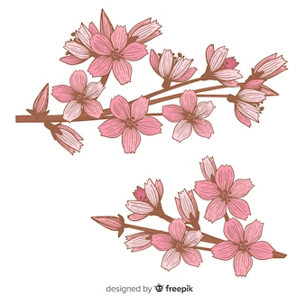 Hand drawn cherry blossom branch illustration