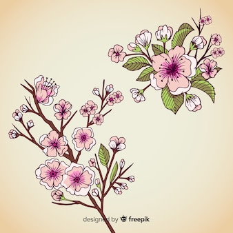 Hand drawn cherry blossom branch