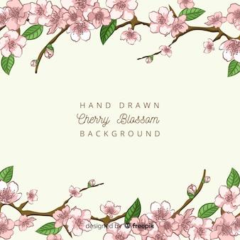 Hand drawn cherry blossom branches