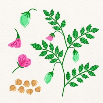 手描きひよこ豆豆と植物のイラスト