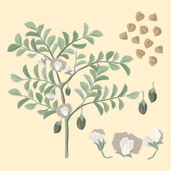 Ручной обращается бобы нута и растения