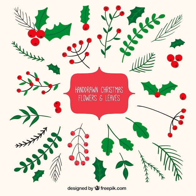 mistletoe vectors photos and psd files free download rh freepik com mistletoe vector image christmas mistletoe vector free