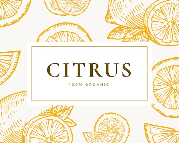 Hand drawn citrus illustration card. abstract  lemon and orange sketch background with classy retro typography.