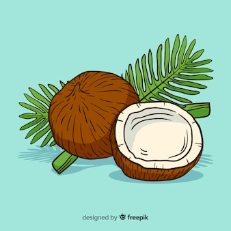 손으로 그린 코코넛 배경