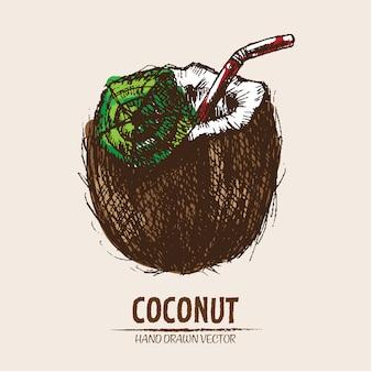 손으로 그린 코코넛 음료 배경
