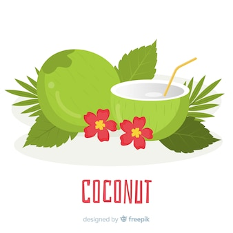 Hand drawn coconut illustration