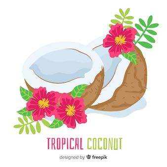 손으로 그린 코코넛 그림