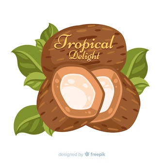 Hand drawn coconut with leaves background