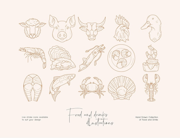 Hand drawn collection of line art food illustrations template for branding banner poster
