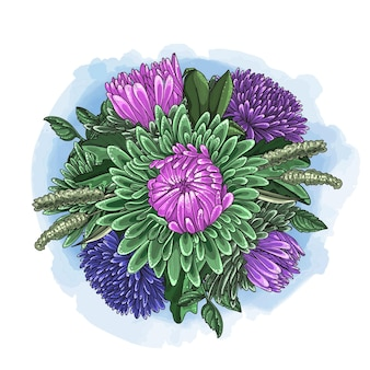 Hand drawn color bouquet of asters. illustration in hand drawn style.