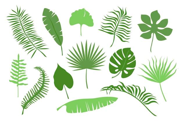 Ручной обращается цветные ветви листьев тропических растений, изолированные на белом фоне. силуэт плоский векторные иллюстрации. дизайн для шаблона, логотипа, шаблона, баннера, плакатов, приглашения, поздравительной открытки