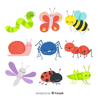Hand drawn colorful bug collection