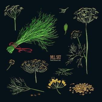 채소, 무리, 가지, 꽃, 꽃이 핌 및 씨앗으로 손으로 그린 다채로운 컬렉션.