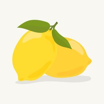 Hand drawn colorful lemon illustration