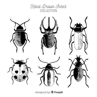 Hand drawn colorless bug collection