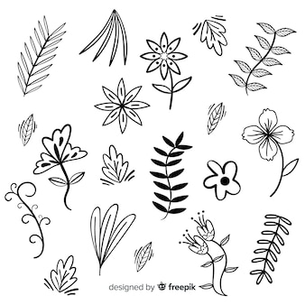 Hand drawn colorless floral decoration elements