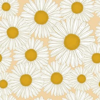 Ручной обращается общий цветок ромашки bellis perennis векторные иллюстрации бесшовные модели