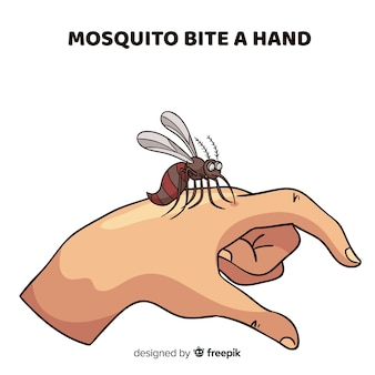 Hand drawn composition of mosquito biting a