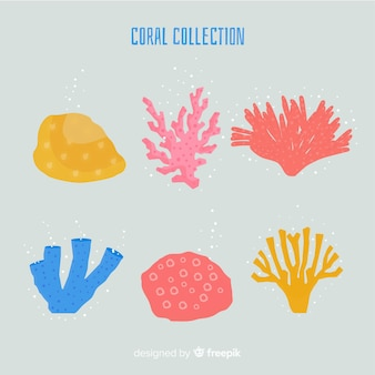Hand drawn coral collection