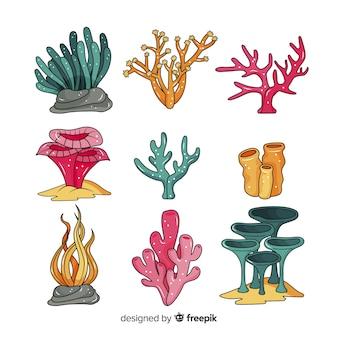 Collezione di coralli disegnati a mano