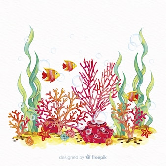Hand drawn coral illustration