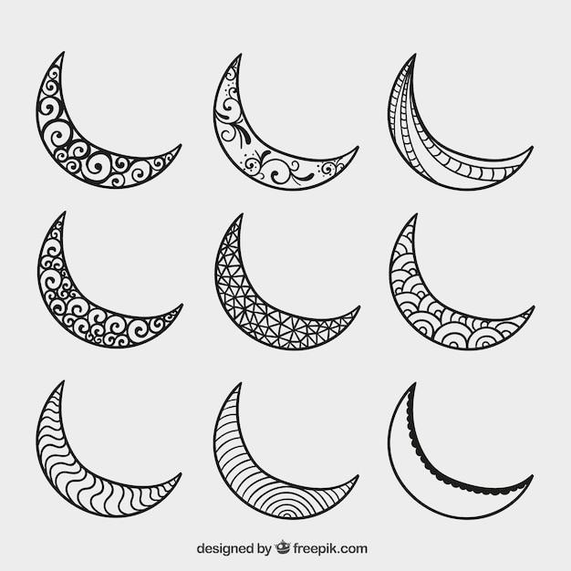 Fox Art Crescent Moon Drawing Pretty Www Picturesboss Com
