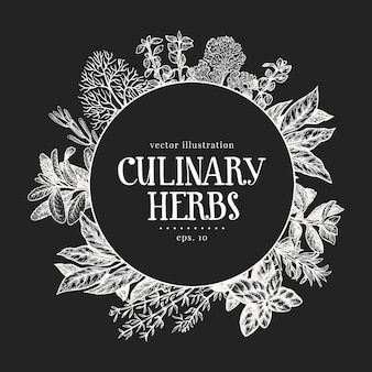 Hand drawn culinary herbs design