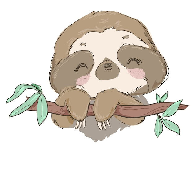Hand drawn cute animal sloth on the tree  illustration