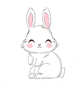 Hand drawn cute bunny illustration