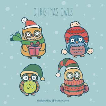 Hand drawn cute chritmas owls