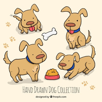 Hand-drawn cute dog in different situations