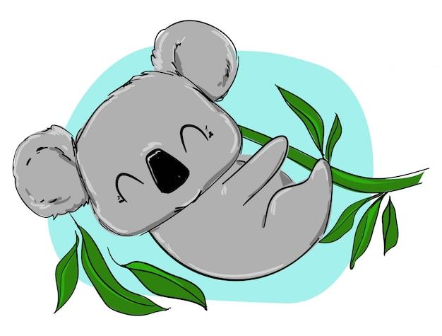 Hand drawn cute koala and eucalyptus.