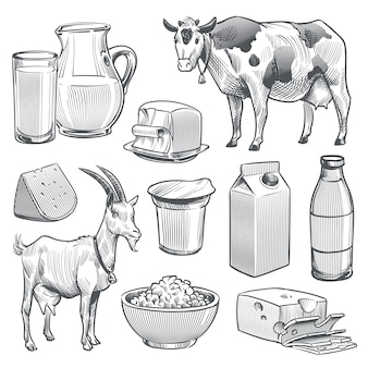 Hand drawn dairy products. farm cow and goat milk healthy fresh product.