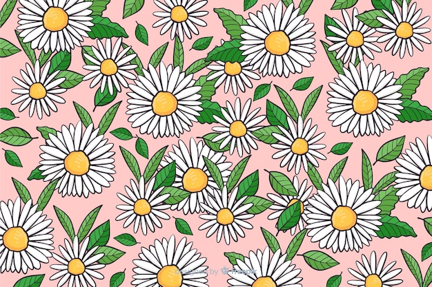 Hand drawn daisies background