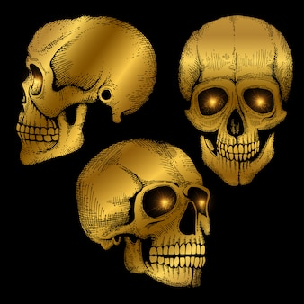 Hand drawn death scary human golden skulls on black background