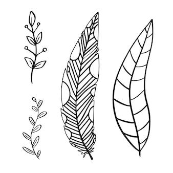 손으로 그린 장식 깃털 디자인.