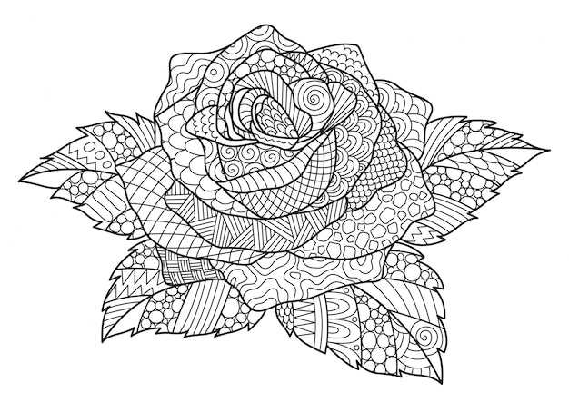 Hand drawn decorative rose