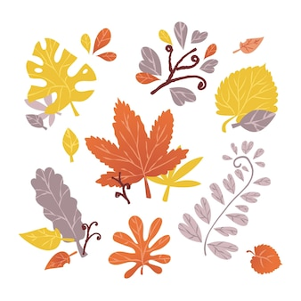 Hand drawn design autumn leaves collection