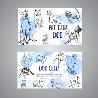 Hand drawn dogs pet care business card