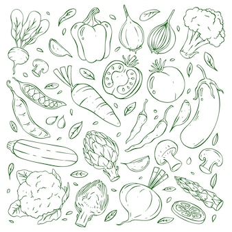 Hand drawn doodle vegetable collection