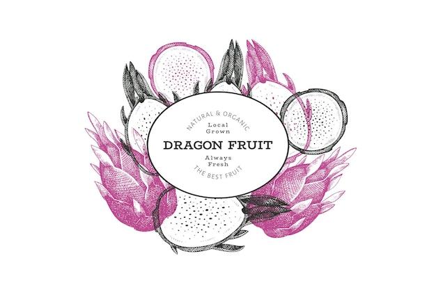 손으로 그린 드래곤 과일 디자인 템플릿입니다. 유기농 신선한 음식 벡터 일러스트 레이 션. 레트로 pitaya 과일 배너입니다.