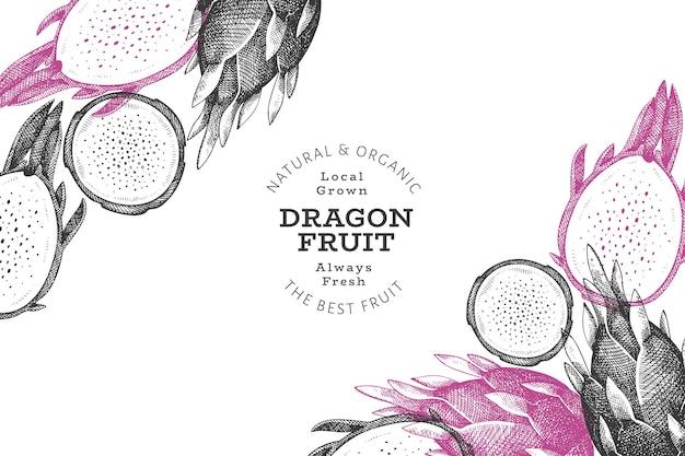 Hand drawn dragon fruit. organic fresh food. retro pitaya fruit background.