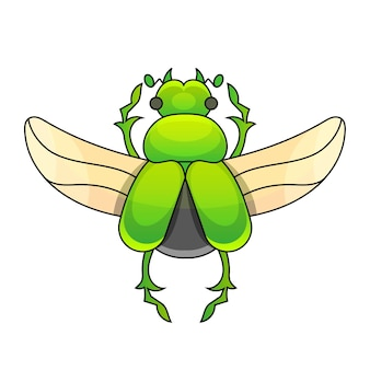 Ручной обращается гравюра эскиз жука, майская ошибка. векторная иллюстрация тату и декоративная брошь ручной работы. можно использовать для открытки, футболки, тканевого мешка или плаката. коллекция насекомых.