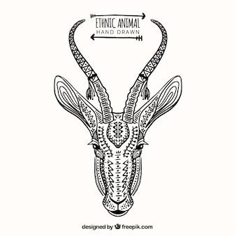 Abbozzo disegnato a mano cervi etnica
