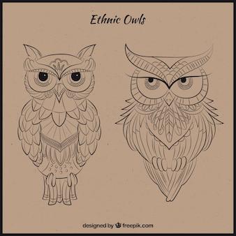 Hand drawn ethnic owls
