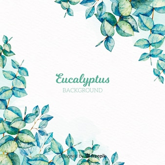 Hand drawn eucalyptus branch background