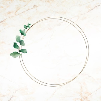 Hand drawn eucalyptus leaf with round gold frame
