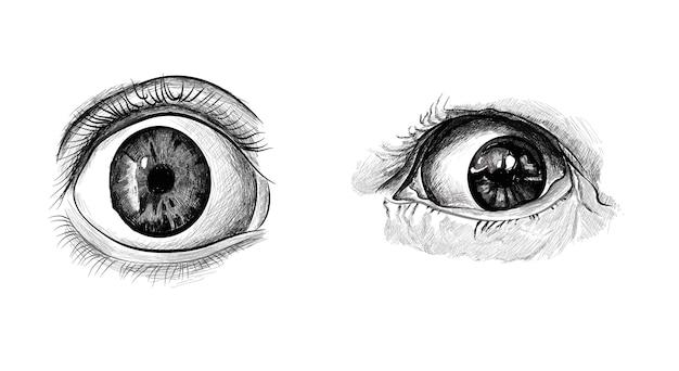 Hand drawn eyes.
